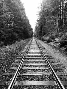 grayscale photography of railway surrounded by trees